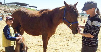 ילד מטפל וסוס רכיבה טיפולית