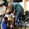 לימודי רכיבה טיפולית עוזרים לנכה לעלות על סוס
