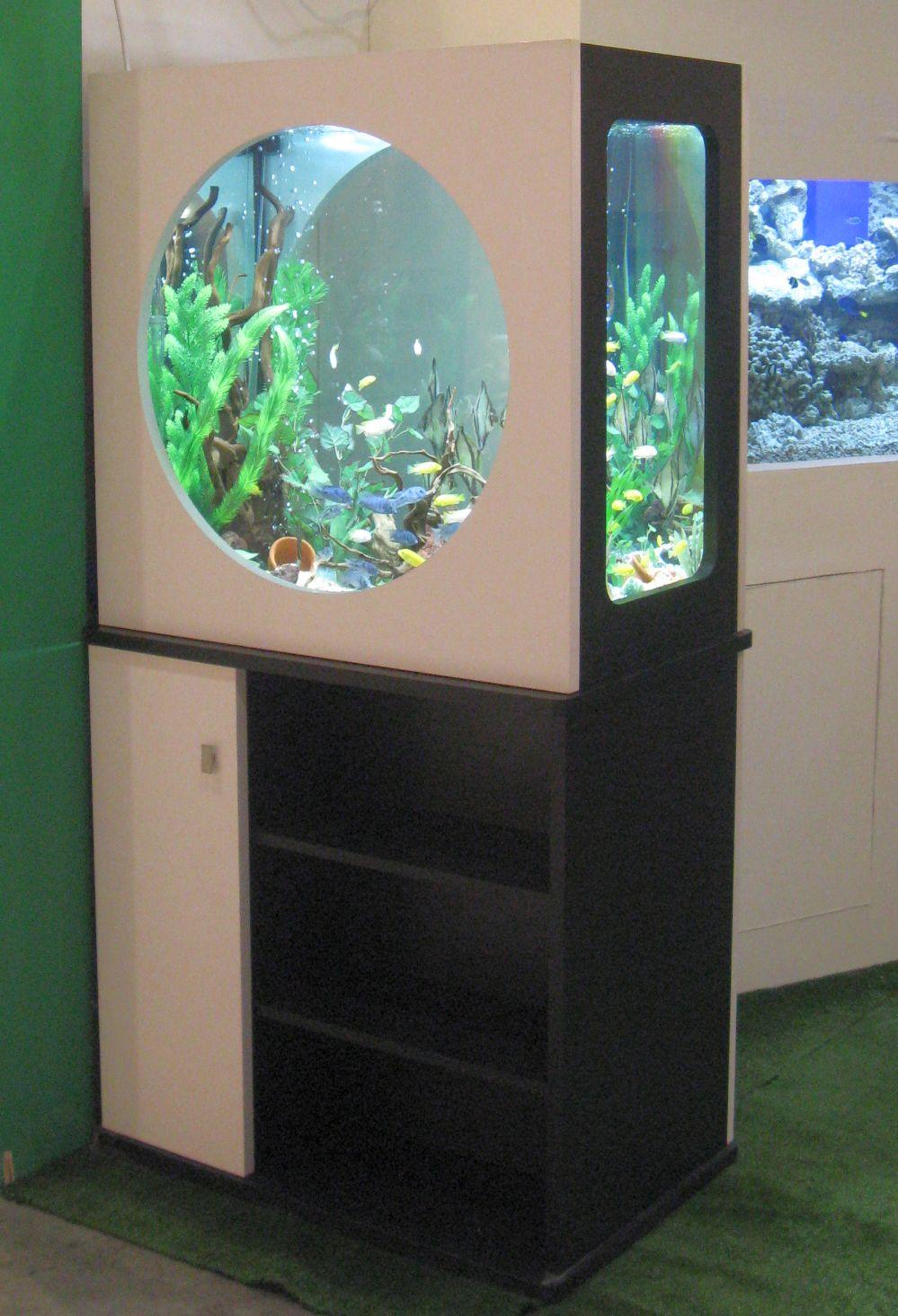 אקווריום מעוצב עם חלונות עגולים