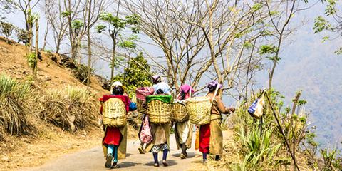 תמונות ממזרח הודו