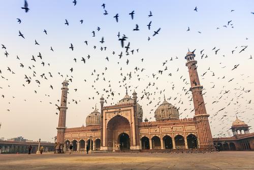 ג'אמה מאסג'יד Jama Masjid