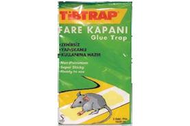 מלכודת עכברים דבק זוגי