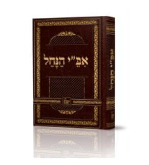 """אב""""י הנחל - רבי ישראל אודסר"""