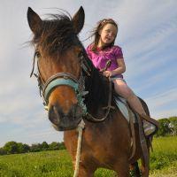 ילדה עם סוס