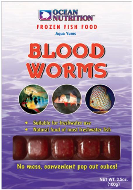 תולעי דם