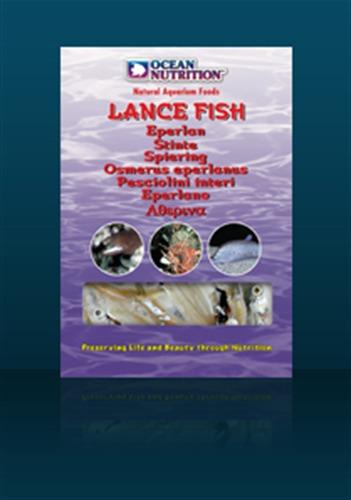 Lance Fish