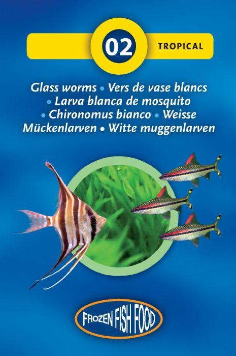 תולעי זכוכית