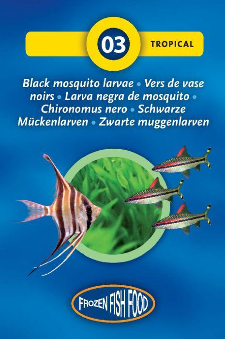 יתושים שחורים