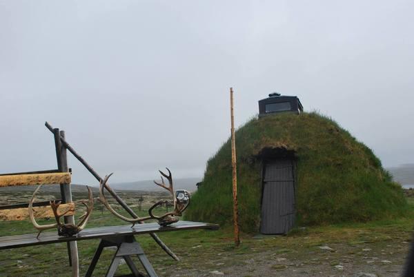 מבנה עם גג דשא