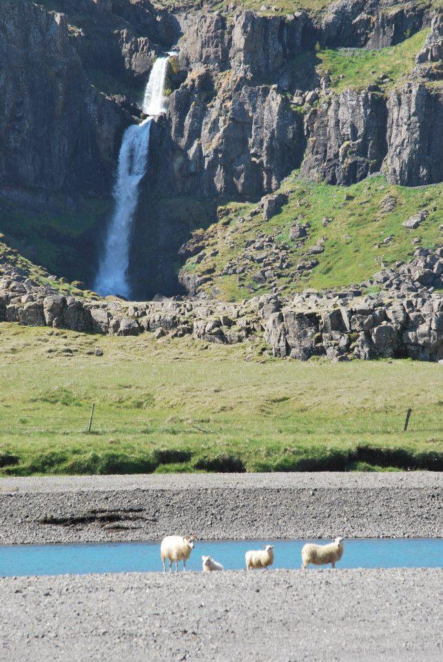 מפל מים במזרח איסלנד