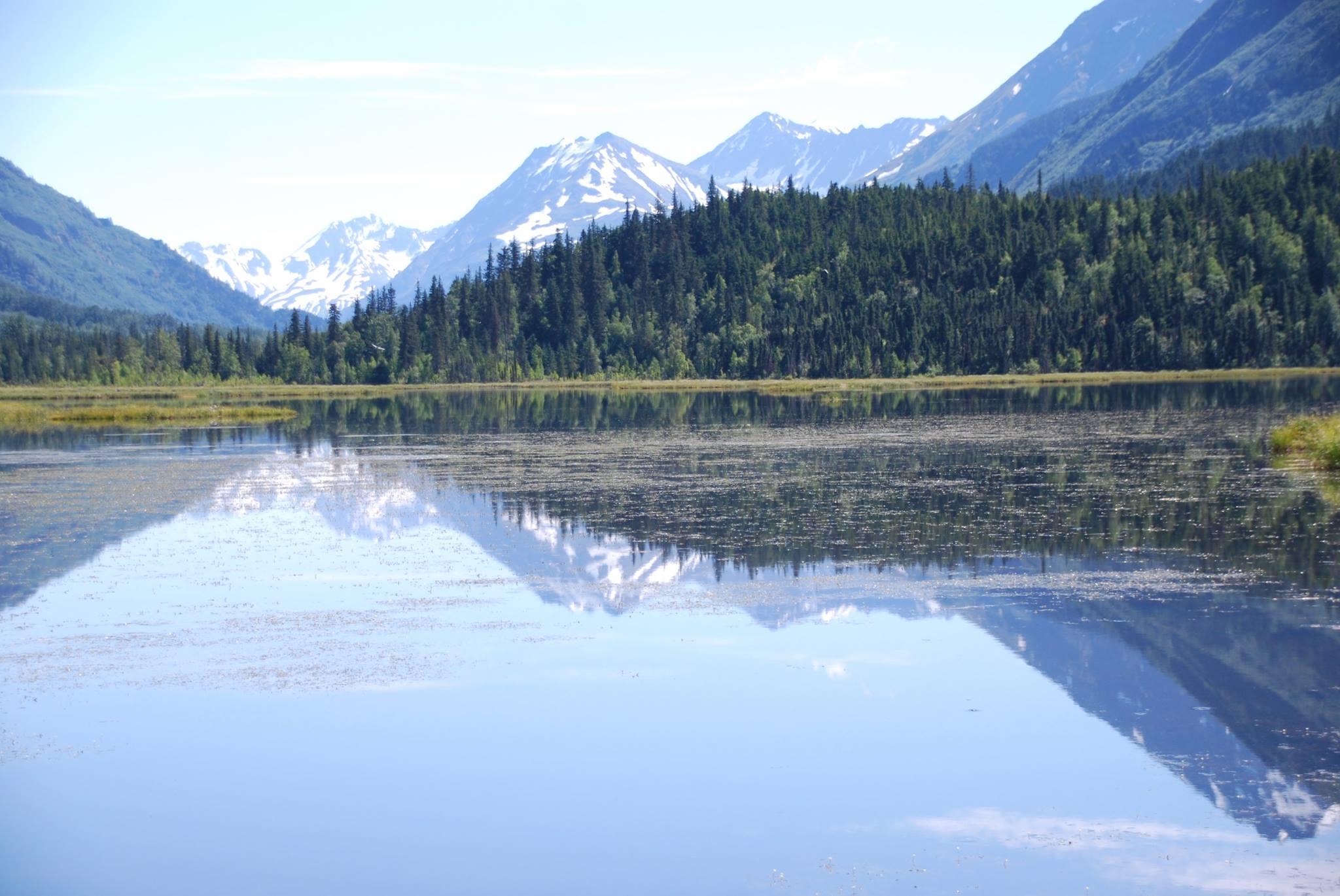 השתקפות באגם TERN