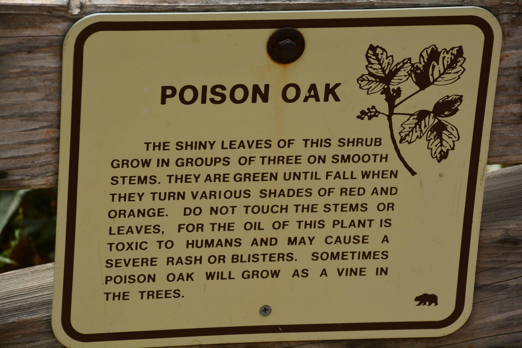 שלט אזהרה על אלון רעיל