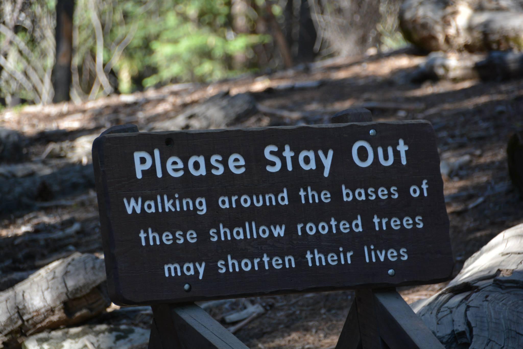שורשים נמוכים-אסור להתקרב-שלט אזהרה