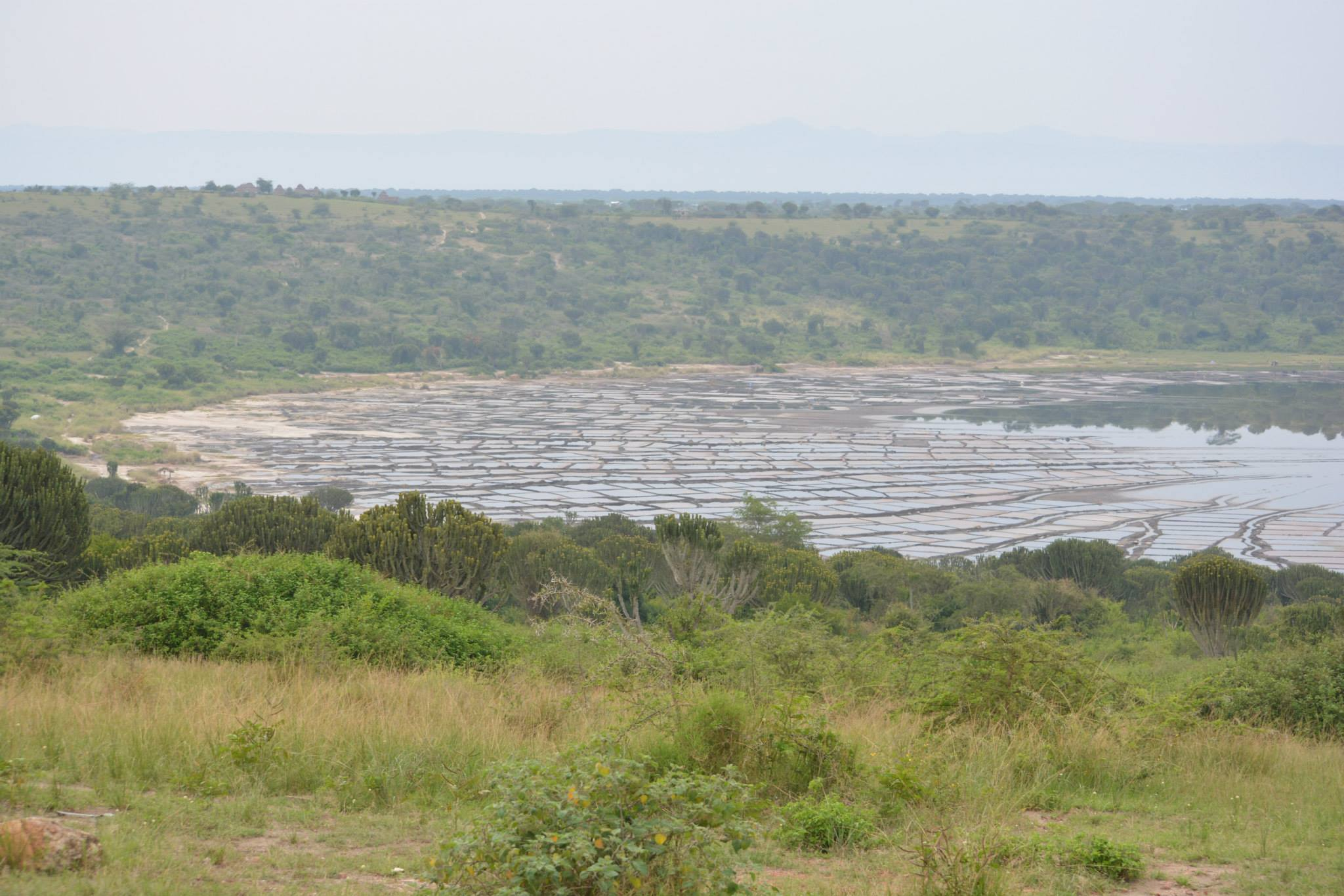 תצפית על אגם המלח