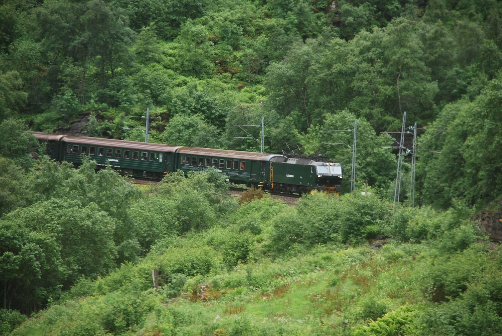 הרכבת היורדת מ-Myrdal