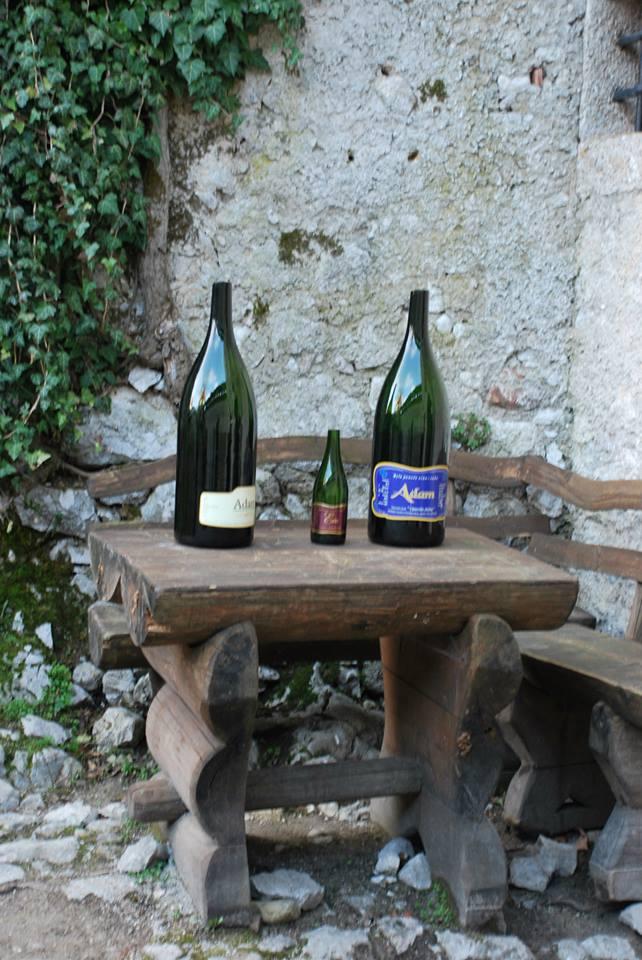 בקבוקי היין בטירת בלד