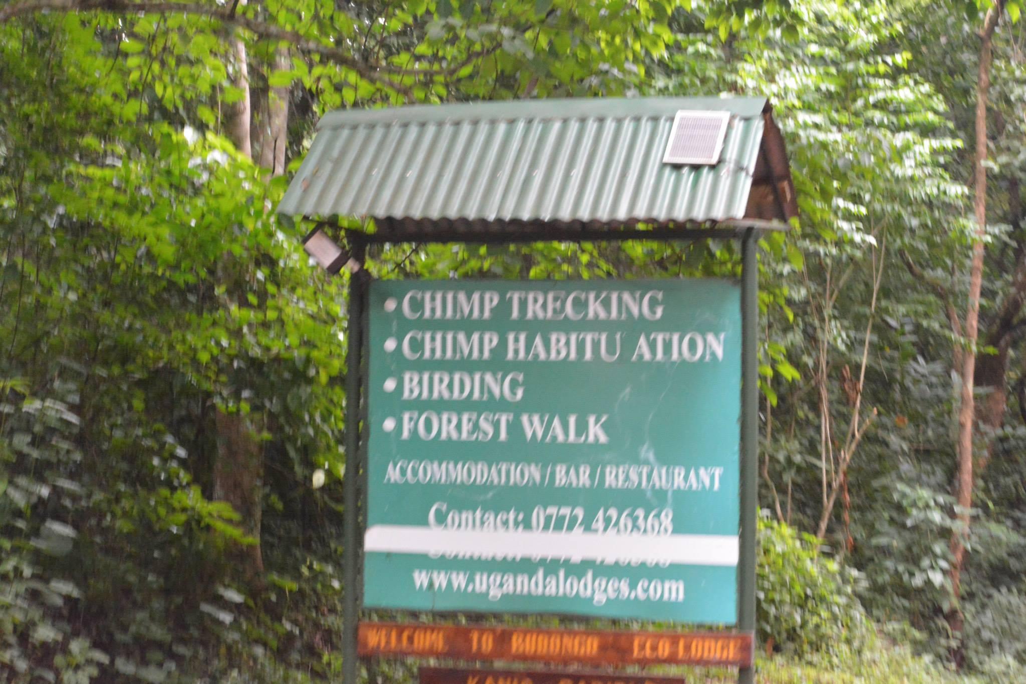 שלט להתחלת סיורי השימפנזים