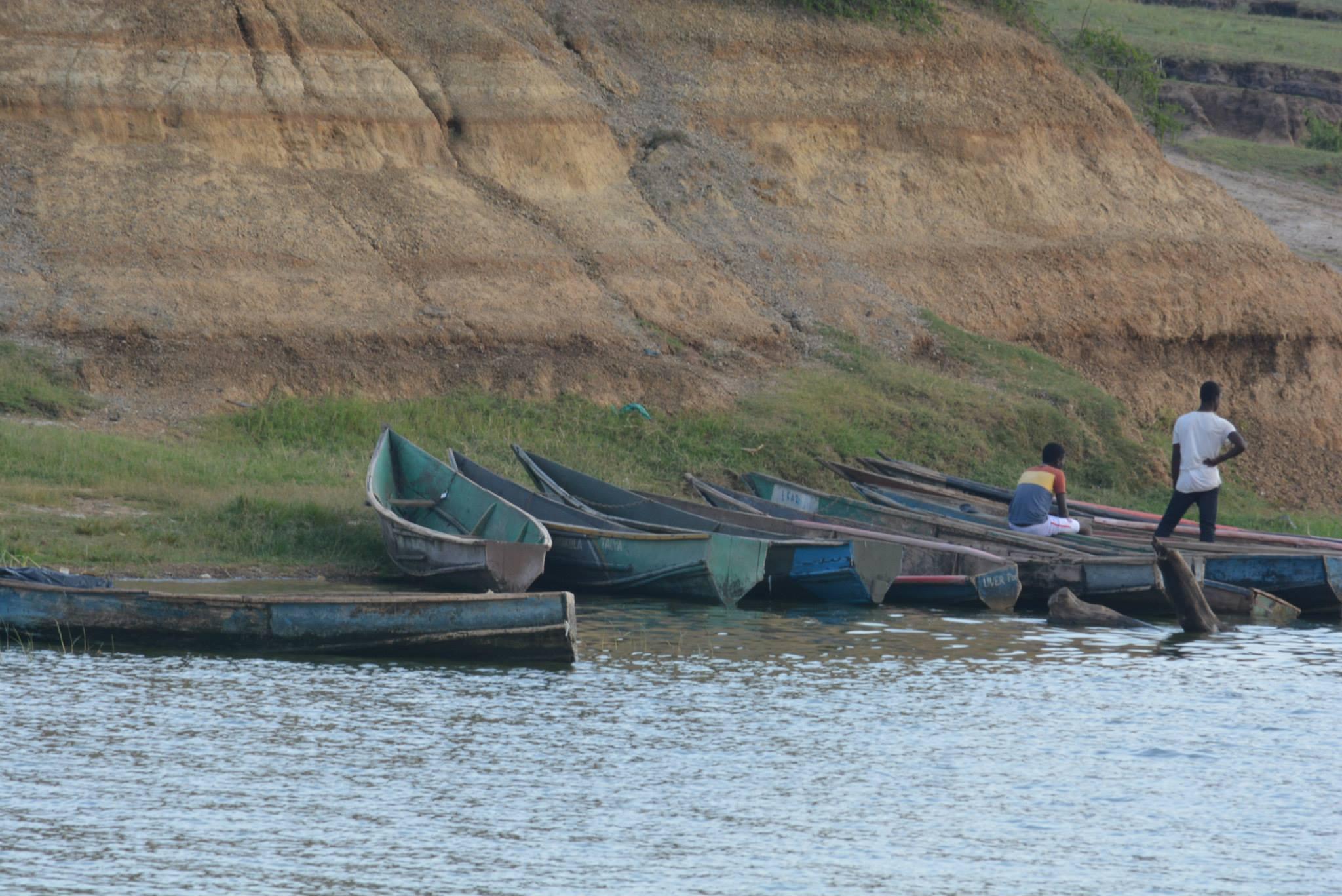 ספינות דייגים מקומיות