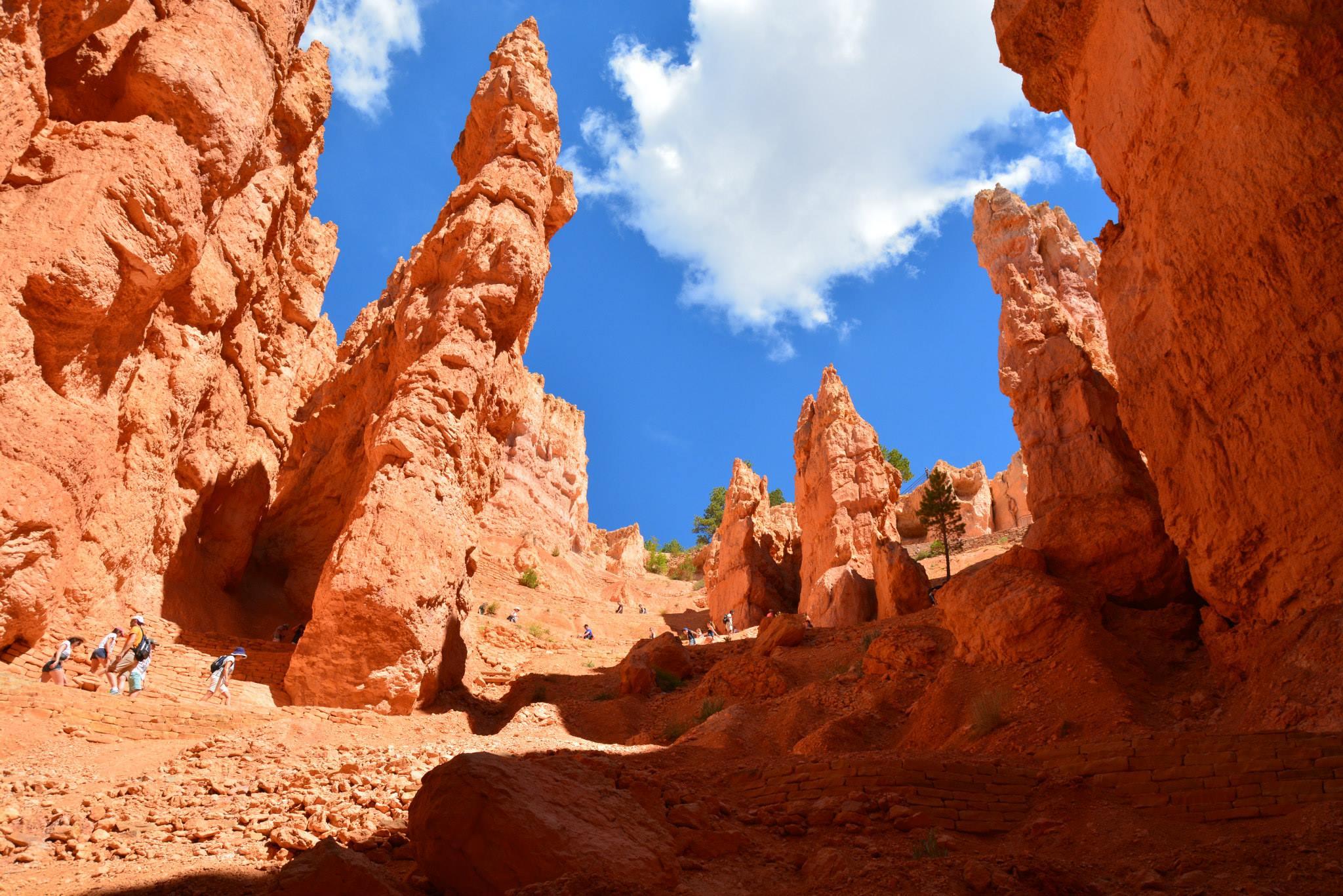 עמודי אבן החול פארק ברייס