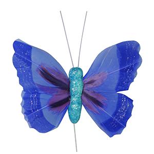 פרפר נוי כחול