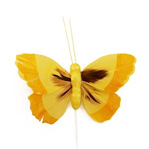 פרפר נוי צהוב