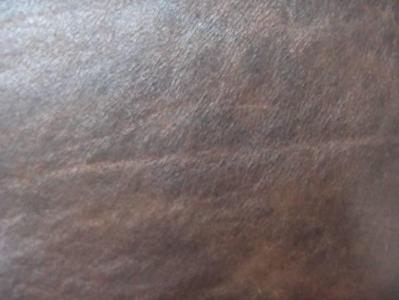 דוגמא לעור פול אפ