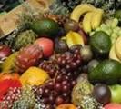 מזון+ ארכיון ידיעות