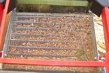 אבנים שהוצאו מארגז חול שהחול בו הוחלף לפני פחות משנה