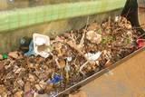 """פסולת שנאספה מארגז חול בפ""""ת"""