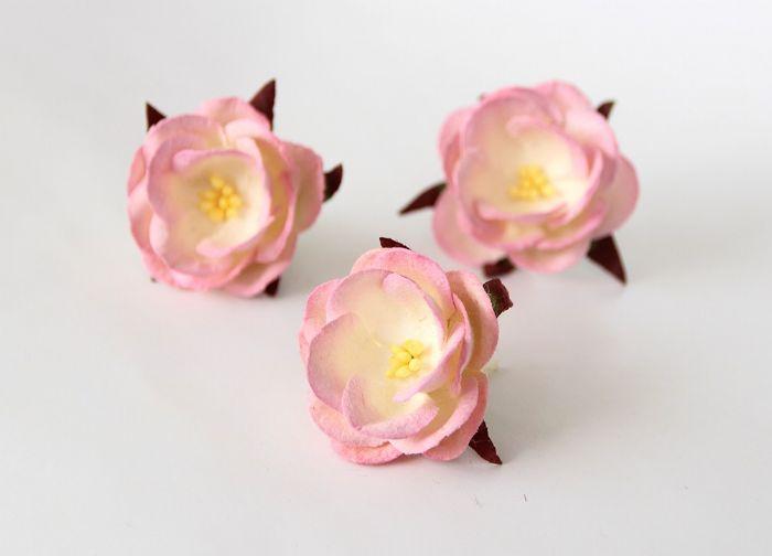 Wild Rose - ורוד-בז'- 4 פרחים
