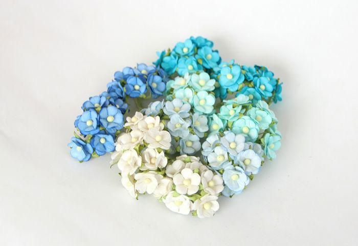 פרחי דובדבן קטן - מיקס תכלת- 10 פרחים