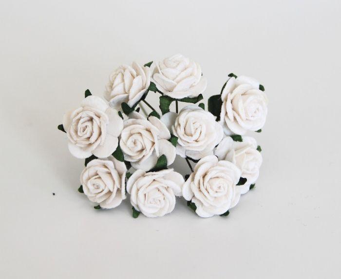 """ורד 2ס""""מ - לבן- 10 פרחים"""