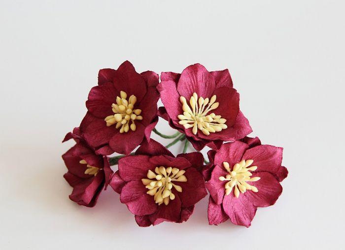 פרחי פרג - בורדו- 5 פרחים