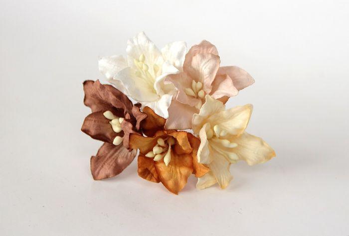 ליליות - מיקס חום- 5 פרחים