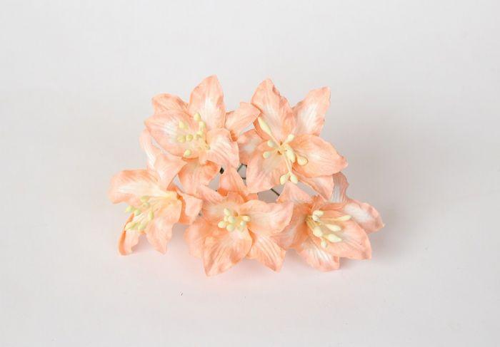 ליליות - כתוב בהיר- 5 פרחים