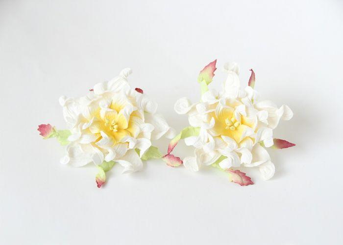 """גרדניה 7ס""""מ - לבן+ צהוב- 4 פרחים"""