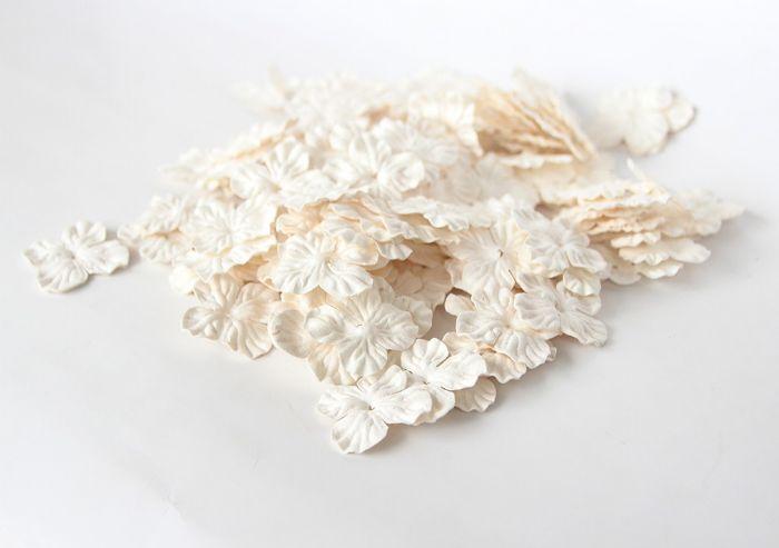 30 פרחי גרוטנזיה קטנים - לבן