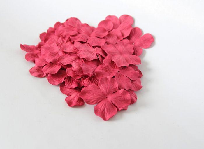 גרוטנזיה גדולה - אדום- 13 פרחים