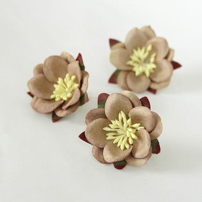 סקורה - מוקה - 4 פרחים