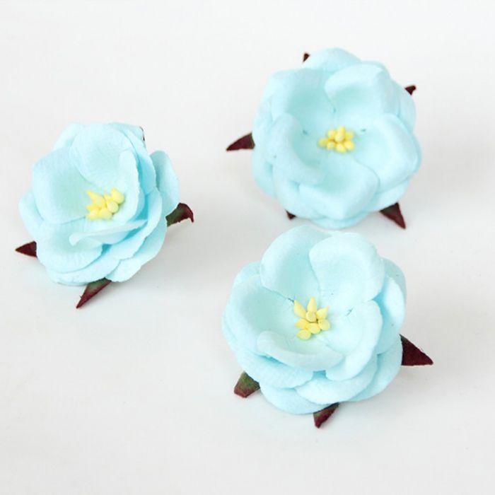 Wild Rose - טורקיז