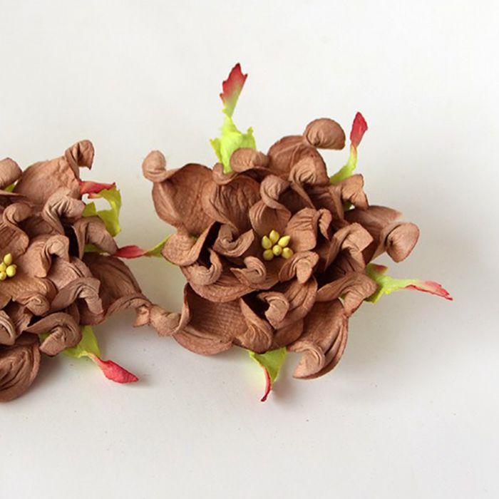 """גרדניה 7ס""""מ- קפה- 4 פרחים"""