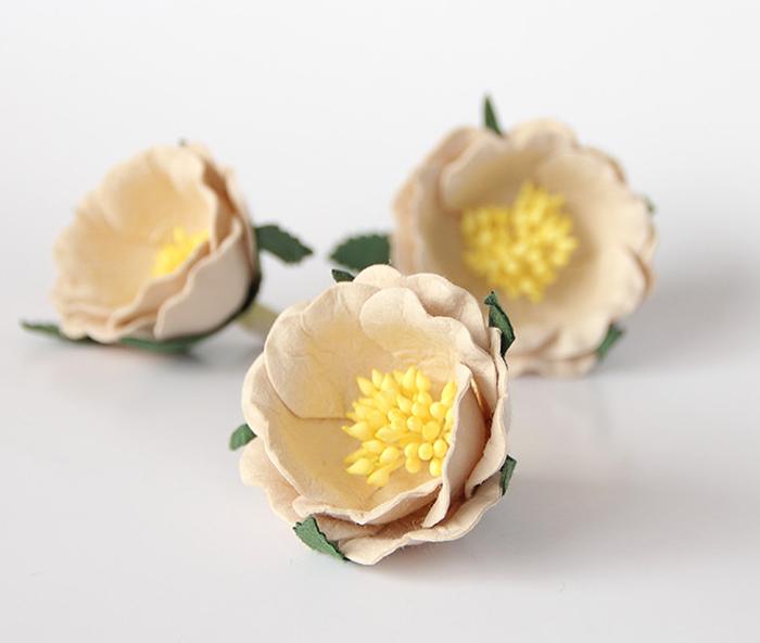 ורד יפני בז' 4 פרחים