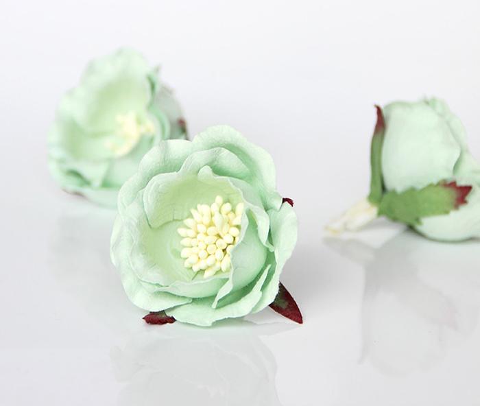 ורד יפני מנטה 4 פרחים