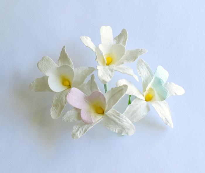 סחלב 4 פרחים