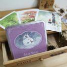 גלויות פולארויד בקופסת מתחת