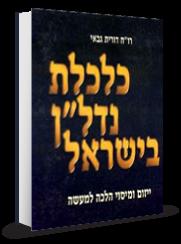 כלכלת נדלן בישראל