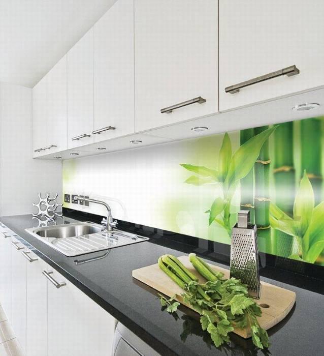 חיפוי זכוכית למטבח דוגמא-1 שילוב של צמחיה