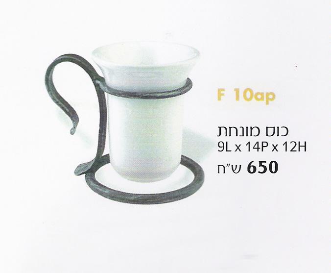 כוס מונח-פלורה.