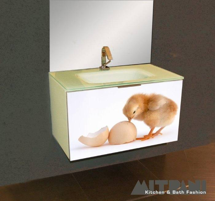 חיפוי זכוכית בחזית ארון אמבט-עוף גוזל.