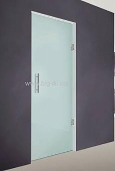 דלת כניסה הילטון-H-100